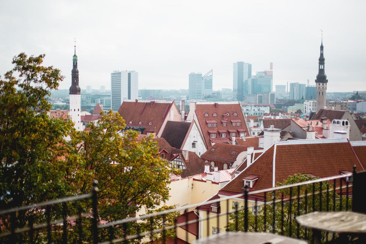Image result for study in Estonia
